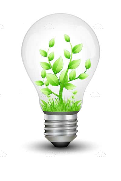 Lightbulb with Green Plant Inside