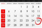 Calendar Sheet with Highlighted Date
