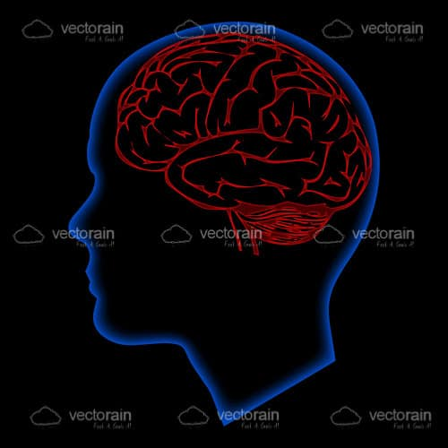 Electric Blue Outline of Human Head with Red Outlined Brain
