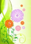 Colourful Floral Card Background