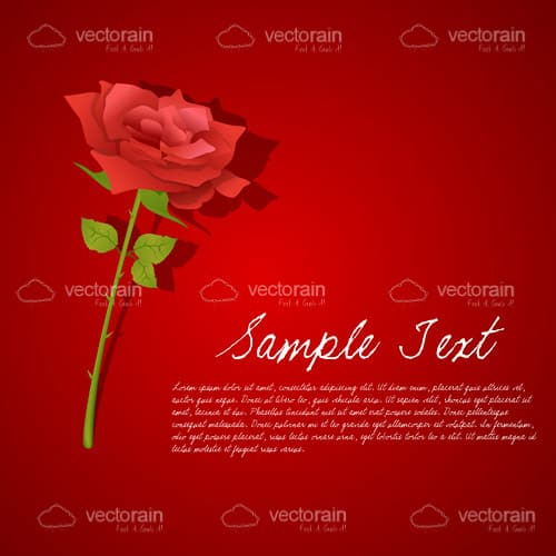 Red Rose Card with Sample Text