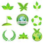 Organic Theme Icon Set with Green Leaves