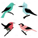 Colorful Illustrated Birds