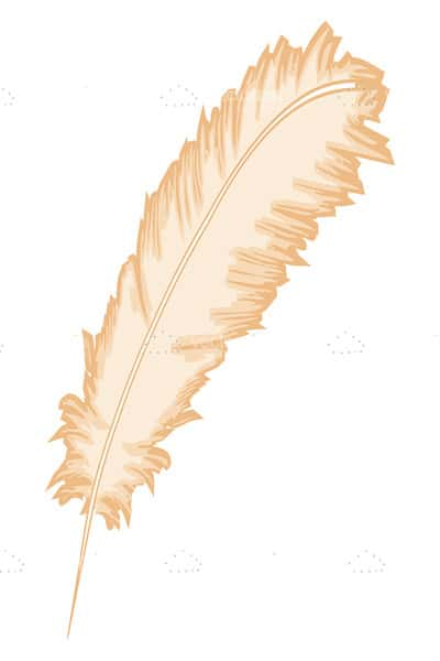Feather leaf