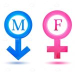 Pink and Blue Male and Female Icons