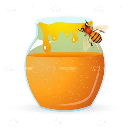 Illustrated Jar of Honey with Bee