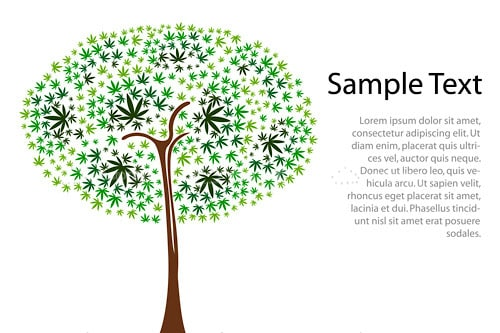 Abstract Tree with Dots and Sample Text
