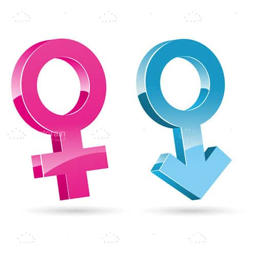 Glossy Male And Female Symbols Vectorjunky Free Vectors Icons