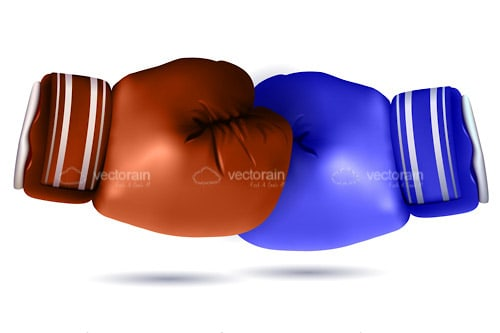 Brown and Blue Boxing Gloves