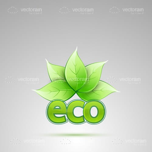 Eco Logo with Green Leaves Icon