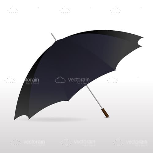 Large Black Umbrella