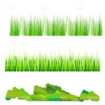 Different Types of Natural Looking Grass